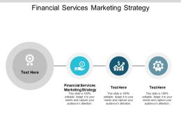 Financial Services Marketing Strategy Ppt Powerpoint Presentation Layouts Example Introduction Cpb