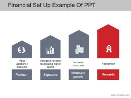 Financial Set Up Example Of Ppt