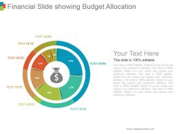 Financial Slide Showing Budget Allocation Ppt Background