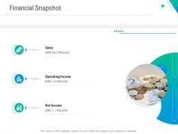 Financial Snapshot Business Outline Ppt Microsoft