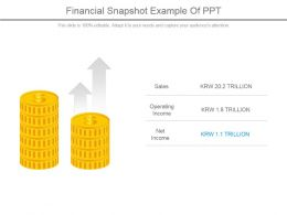 Financial Snapshot Example Of Ppt