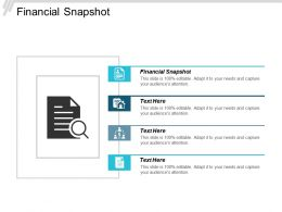 Financial Snapshot Ppt Powerpoint Presentation Gallery Example Cpb