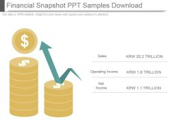 Financial Snapshot Ppt Samples Download