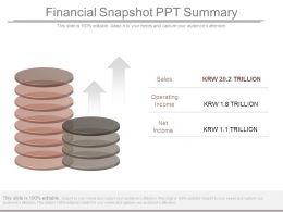 Financial Snapshot Ppt Summary