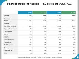 Financial Statement Analysis P And L Statement Ppt Powerpoint Presentation File Inspiration