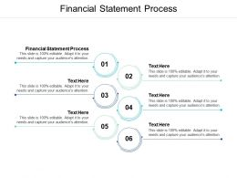 Financial Statement Process Ppt Powerpoint Presentation Outline Portrait Cpb