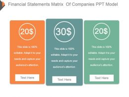 Financial Statements Matrix Of Companies Ppt Model