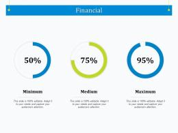 Financial Strategic Management Maturity Model Assessment Ppt Powerpoint Summary