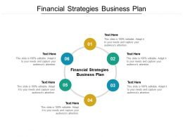 Financial Strategies Business Plan Ppt Powerpoint Presentation Professional Inspiration Cpb