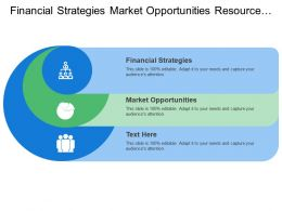 Financial Strategies Market Opportunities Resource Identification Near Term Needs