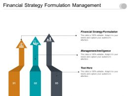 Financial Strategy Formulation Management Intelligence Investment Predictions Cpb