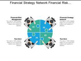 Financial Strategy Network Financial Risk Management Services Strategy Analytics Cpb