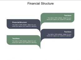 Financial Structure Ppt Powerpoint Presentation Portfolio Graphics Tutorials Cpb
