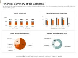 Financial Summary Of The Company Equity Crowd Investing Ppt Formats