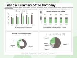 Financial Summary Of The Company Revenue Split Ppt Powerpoint Presentation Infographics