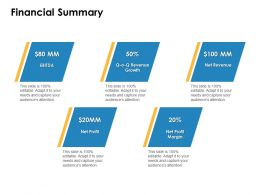 Financial Summary Revenue Marketing Ppt Powerpoint Presentation Examples