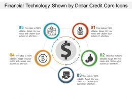 Financial Technology Shown By Dollar Credit Card Icons