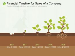 Financial Timeline For Sales Of A Company