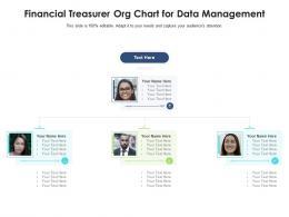 Financial Treasurer Org Chart For Data Management Infographic Template
