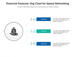 Financial Treasurer Org Chart For Speed Networking Infographic Template