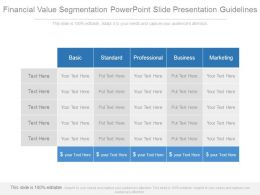 Financial Value Segmentation Powerpoint Slide Presentation Guidelines