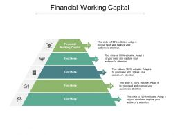Financial Working Capital Ppt Powerpoint Presentation Professional Graphics Cpb