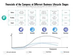 Financials Of The Company At Different Business Lifecycle Stages