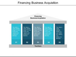 Financing Business Acquisition Ppt Powerpoint Presentation Gallery File Formats Cpb