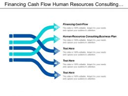Financing Cash Flow Human Resources Consulting Business Plan Cpb