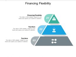 Financing Flexibility Ppt Powerpoint Presentation Ideas Deck Cpb