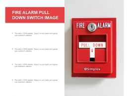 Fire Alarm Pull Down Switch Image
