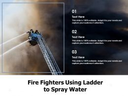 Fire Fighters Using Ladder To Spray Water