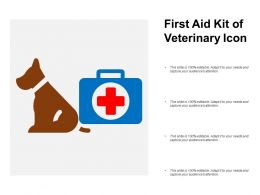 First Aid Kit Of Veterinary Icon