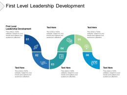 First Level Leadership Development Ppt Powerpoint Presentation Pictures Slide Portrait Cpb