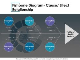 Fishbone Diagram Cause Effect Relationship Ppt Show Deck