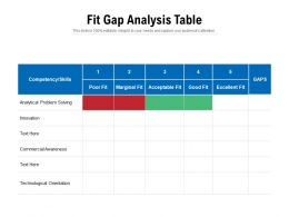Fit Gap Analysis Table