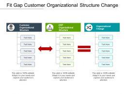 Fit Gap Customer Organizational Structure Change