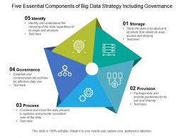 Five Essential Components Of Big Data Strategy Including Governance
