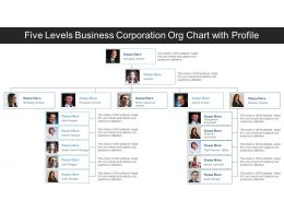 Five Levels Business Corporation Org Chart With Profile