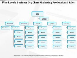 Five Levels Business Org Chart Marketing Production And Sales