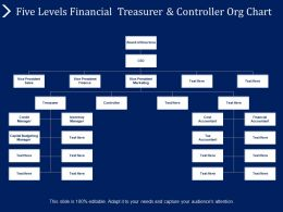 Five Levels Financial Treasurer And Controller Org Chart