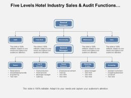 Five Levels Hotel Industry Sales And Audit Functions Org Chart