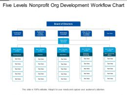 Five Levels Nonprofit Org Development Workflow Chart