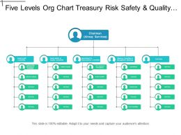 Five Levels Org Chart Treasury Risk Safety And Quality For Airlines