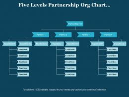 Five Levels Partnership Org Chart Maintenance Operations Departments