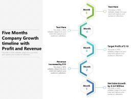 Five Months Company Growth Timeline With Profit And Revenue