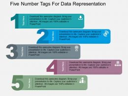 Five Number Tags For Data Representation Flat Powerpoint Design