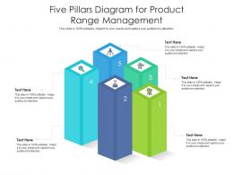Five Pillars Diagram For Product Range Management Infographic Template