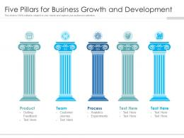 Five Pillars For Business Growth And Development
