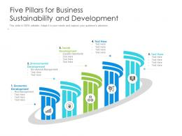 Five Pillars For Business Sustainability And Development